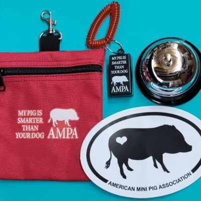 AMPA Training Bundle