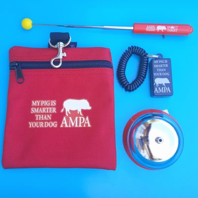 mini pig training bundle