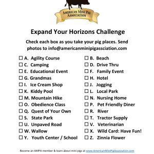 Expand Your Horizons Challenge-page-001