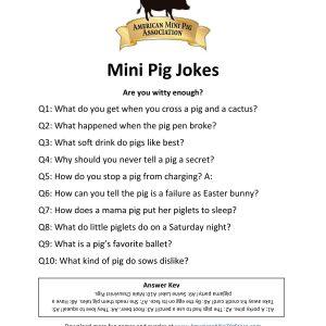Mini Pig Jokes-page-001