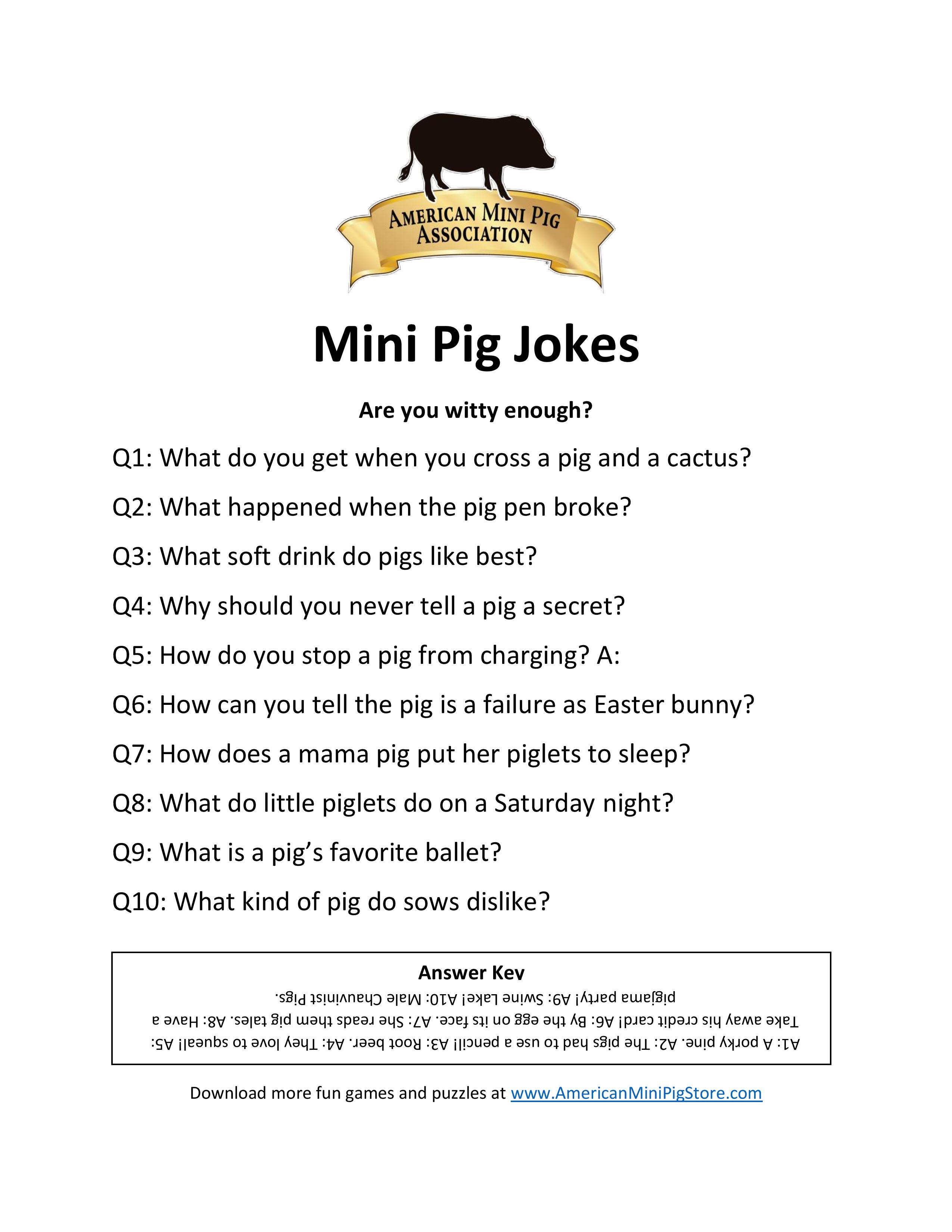 Mini Pig Jokes American Online Store