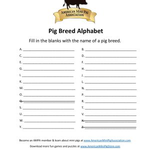 Pig Breed Alphabet-page-001