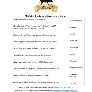 Pig Breeds Trivia-page-001