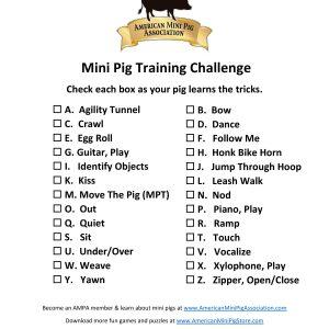 Pig Training Alphabet Challenge-page-001