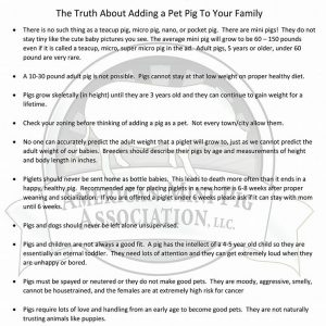 the truth about adding a pig to your family