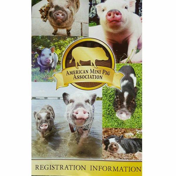 AMPA Mini Pig Registration Form