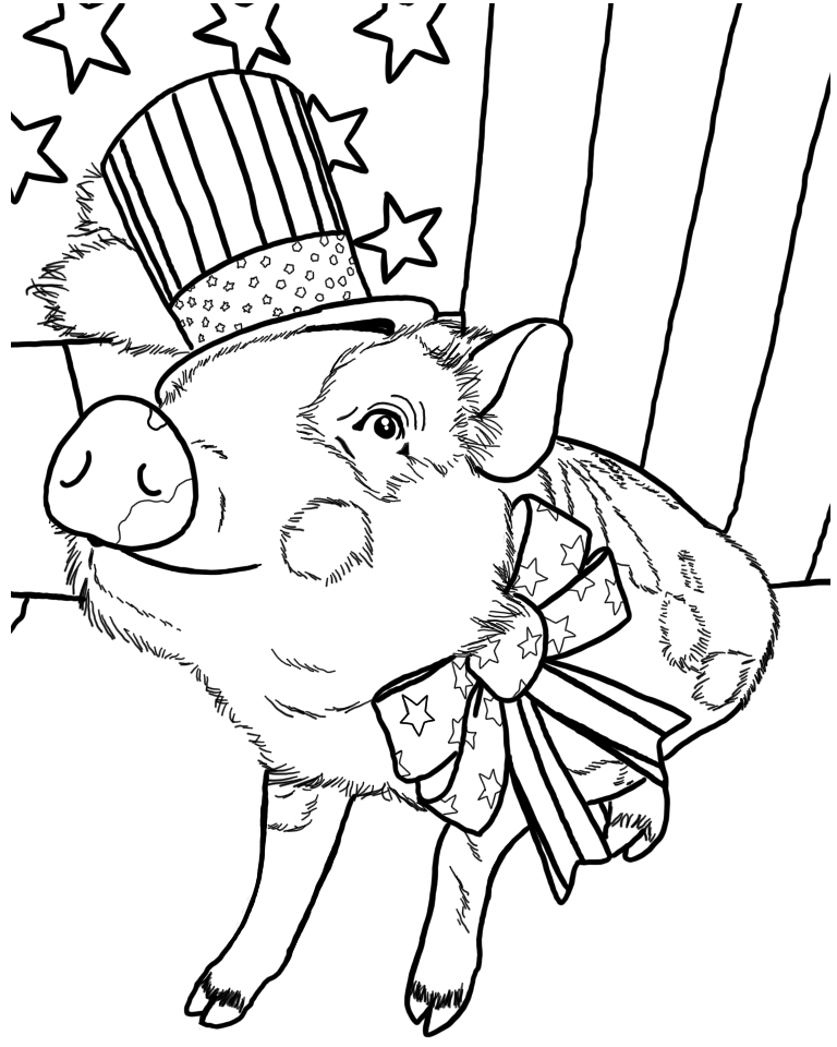 THE AMERICAN MINI PIG COLORING BOOK SERIES