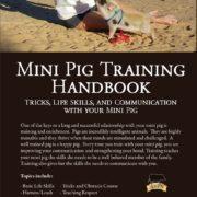 Mini Pig Training
