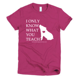 I Only Know What You Teach Short sleeve fitted women's t-shirt