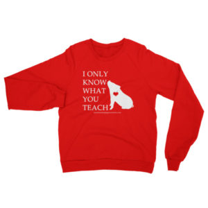 I Only Know What You Teach Raglan sweater