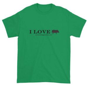 I Love Short sleeve t-shirt