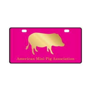 Gold Pig AMPA License Plate
