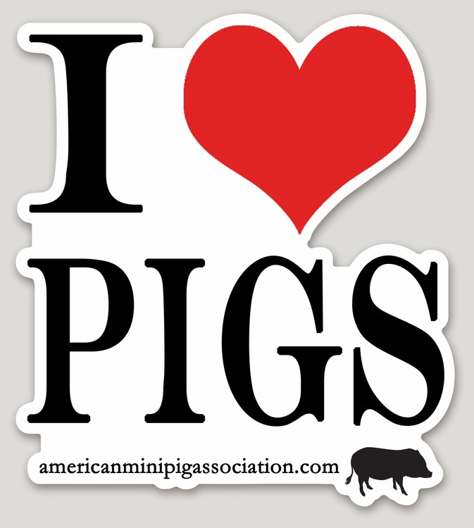 I heart pigs decal sticker