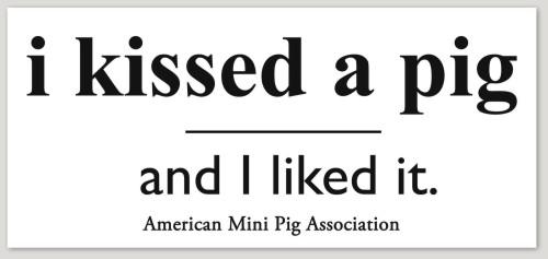 i kissed a pig sticker