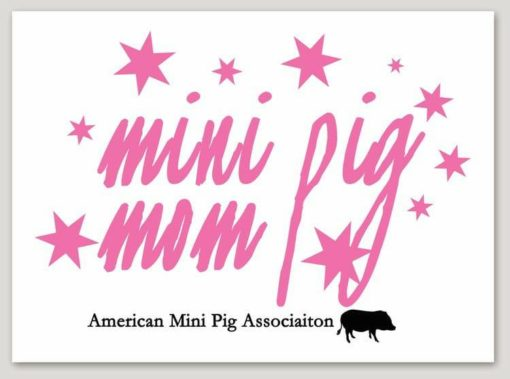 mini pig mom decal